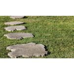 borealis-stepping-stone