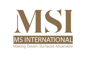 msi internation logo